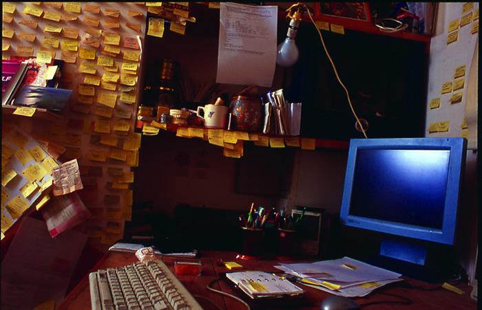 willselfdesktop1